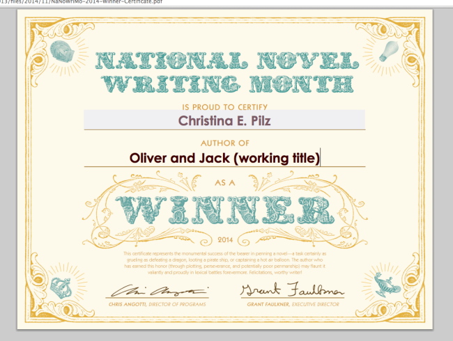 NaNoWriMo – Day Thirty
